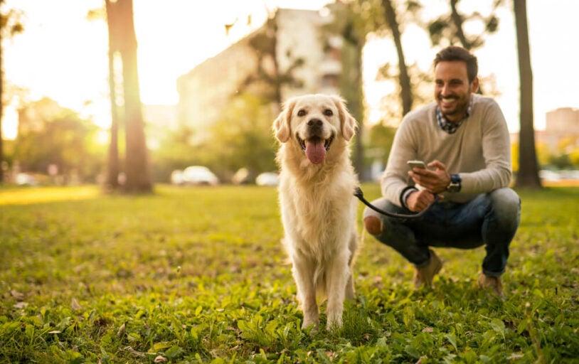Man and Dog at park